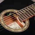 Ibanez EP10 Vai Soundhole