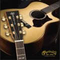 Martin Guitars