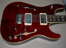 Schecter Guitar in Red