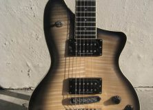 Washburn P Series Burst Body
