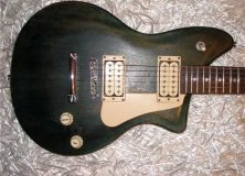 Washburn P Series Dark Wood