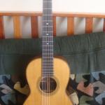 Martin 1894 Acoustic Guitar