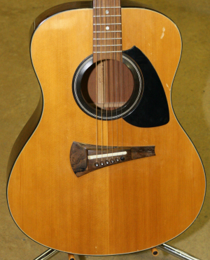 Gibson Acoustic MK351