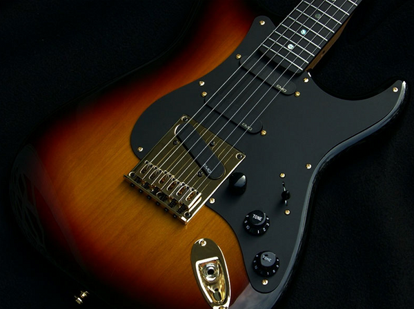 Haywire Stratotelia Guitar