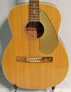 Fender Malibu Body