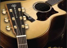 Martin Guitars To Protect Against Counterfeitting With DNA Science