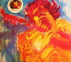 Jimi Hendrix - The Hendrix Concerts