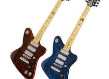 Two More Firebird Guitars.