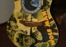 Acoustic Wolfman Guitar