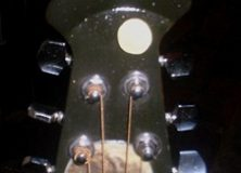 Wolfman Guitar Headstock