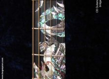 Dragon by CB Guitars #2 Inlays