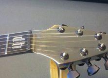D&H Stainless Flying V Guitar