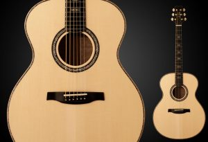 Series III Grand Acoustic Guitar
