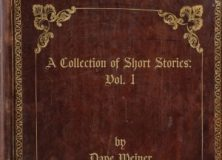 Dave Weiner A Collection of Short Stories Volume 1 acoustic guitar album