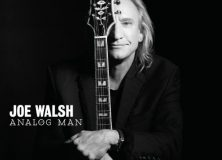 Joe Walsh Analog Man Electric Guitar Album