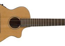 Breedlove Passport C250
