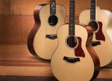 NAMM 2013: Taylor Introduces Grand Orchestra Series Acoustics