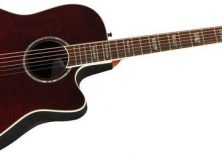 What's New at Music Stores: Issue 7 - Taylor and Takamine