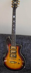 Washburn P Series Tobacco Sunburst