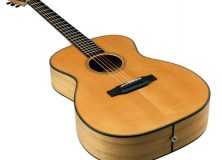 Breedlove's Oregon Series Acoustic Guitars