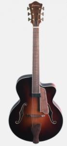 Eastman AR605